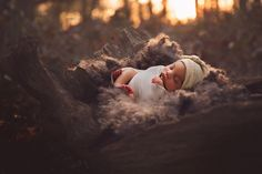 Toronto newborn photographer specializing in babies, maternity and family photography in the greater Toronto area. Newborn Photographer, Family Photographer, Outdoor Newborn Photography, Maternity, Photographs, Teen, Couples, Children, Baby
