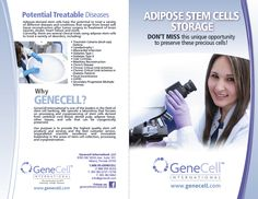 GeneCell Adipose Brochure, Pg.1 Muscle Disorders, Adipose Tissue, Heart Muscle, After Surgery, Heart Failure, Liposuction, Stem Cells, Human Body, Conditioner