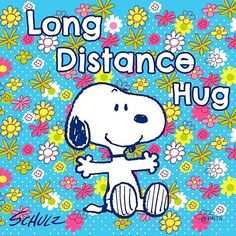 Snoopy And The Peanuts Gang ( Snoopy Love, Snoopy Hug, Snoopy And Woodstock, Happy Snoopy, Snoopy Beagle, Snoopy Images, Snoopy Pictures, Funny Pictures, Hug Pictures