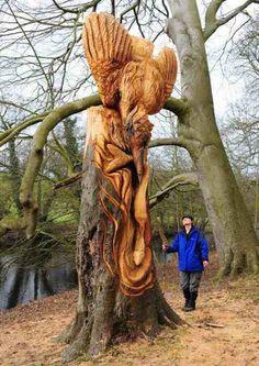 Guerilla-Künstler schnitzt Baum-Skulpturen