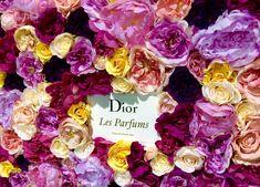 Dior Flower Bottle by Donaldo Radovich Dior Flowers, Flower Bottle, Flower Installation, Creative Words, Floral Design, Concept, Create, Rose, Plants