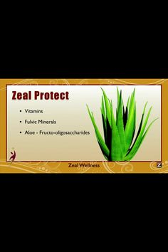 www.sparksteam.zealforlife.com Protect your body with what is on Zeal.