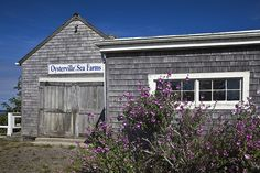 all about Oysterville, Wash. | Southwest Coastal Washington a set by Lee Rentz