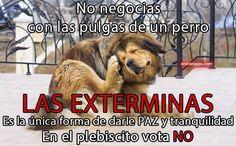 Caretrasero - Vota NO
