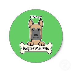 We love our Belgian Malinois!