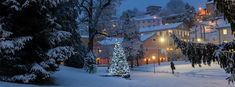 A Joyous Holiday Season at TASIS