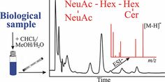 Hydrophilic Interaction Liquid Chromatography–Mass Spectrometry Characterization of Gangliosides in Biological Samples