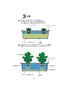 yep Japanese, Gardening, Ideas, Japanese Language, Lawn And Garden, Thoughts, Horticulture