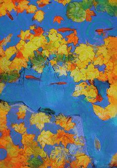 Autumn in the pond, 11x17, Original Signed, Fine Art photograph, blue decor, yellow decor, art, Gold fish, Autumn pond on Etsy, $99.00