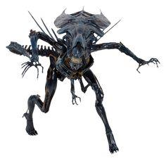 Aliens Xenomorph Queen Ultra Deluxe Boxed Action Figure | NECAOnline.com