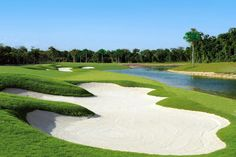 Find golf courses thought by the best designers in the industry! A list of some of the most renowned golf courses in the Riviera Maya, in Mexico. Riviera Maya, Rustic Canyon, Olympic Venues, Famous Golf Courses, Coral, How To Level Ground, Cancun, Beautiful Beaches, The Good Place