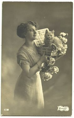 Lady Super Cute White Kitten Cat Old Photo Postcard