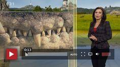 ... krokodýlí zoo v Praze Holešovicích