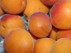 If you are diagnosed with anemia, your hemoglobin levels are below the normal range.Apricots are one of the best remedies around for anemia. Iron Rich Fruits, Iron Rich Foods, Anemia Symptoms, Apricot Scrub, Iron Deficiency Anemia, Delicious Fruit, Vape, Health And Wellness, Yum Yum