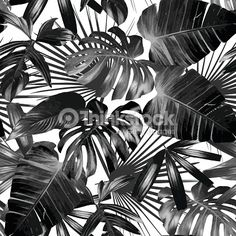 Graphic Palm Leaves Seamless Background Stock Vector - Illustration of aloha, black: 73887193 Tropical Wallpaper, Summer Wallpaper, Tree Wallpaper, Cool Wallpaper, Wallpaper Backgrounds, Vinyl Wallpaper, Botanical Wallpaper, Black And White Leaves, Black And White Background