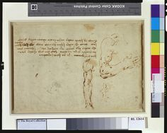 Recto:Two studies of the arm showing it extended and flexed, with notes. Verso: Houses and a mill beside a pond | Royal Collection Trust