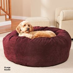 Deluxe Warm & Cuddly Slumber Ball | Dr. Foster & Smith | Large $65