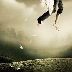 La magie de la solitude par Martin Stranka  2Tout2Rien