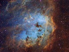 A 12.000 años-luz de distancia, en la constelación de El Cochero (Auriga), se encuentra la Nebulosa del Renacuajo (catalogada como IC 410). Tiene más de 100 años-luz de diámetro y alberga un cúmulo estelar formado hace sólo 4 millones de años... #astronomia #ciencia