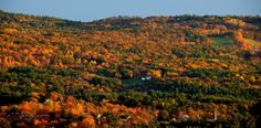Pittsfield in the Fall