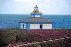 lighthouse island sea