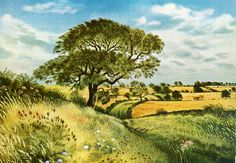 L'Assommoir Sewstern Lane, Leicestershire/Lincolnshire Border, England by David Gentleman
