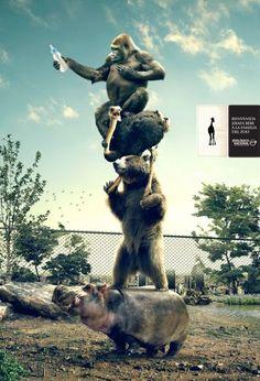 Zoológico Nacional: Baby giraffe | #ads #adv #marketing #creative #publicité #print #poster #advertising #campaign < repinned by www.BlickeDeeler.de | Have a look on www.Printwerbung-Hamburg.de