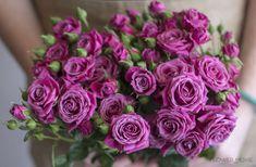 purple spray roses, purple bouquet, flower moxie Diy Wedding Flowers, Spray Roses, Flower Bouquets, Purple, Plants, Paradise, Color, Floral Bouquets, Colour