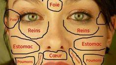 La carte chinoise du visage révèle quelle partie de votre corps est malade et comment vous soigner …
