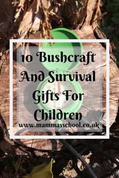 Top bushcraft skills that all survival hardcore will desire to know now. This is basics for wilderness survival and will certainly save your life. Best Survival Gear, Winter Survival, Survival Food, Wilderness Survival, Outdoor Survival, Survival Prepping, Survival Skills, Survival Hacks, Survival School