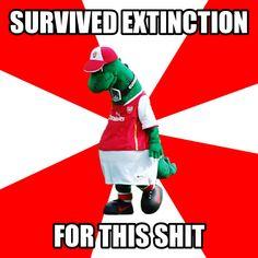 The Gunnersaurus Arsenal Meme. Arsenal Tattoo, Arsenal Shirt, Arsenal Memes, Arsenal Fc, Arsenal Players, Arsenal Football, Funny Football Memes, Funny Memes, Balls