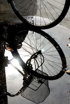 Reflections by ranmali_k, via Flickr