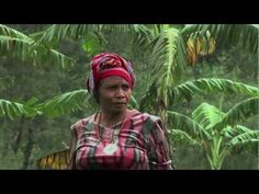 """Aleta Baun: 2013 Goldman Environmental Prize Winner, Indonesia"" #weaving #weavers"