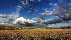 Beştepeler Enerji Kubilay JES (24 MWe) with cotton fields photo by Tayfun Evcil