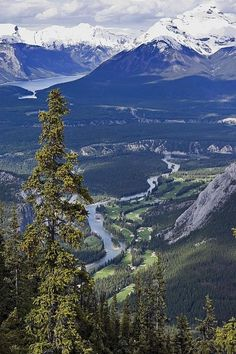 Bow River Valley Overlook by: Paul Riedinger