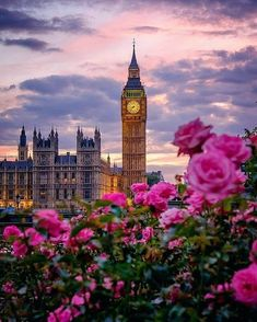 2,507 отметок «Нравится», 19 комментариев — LONDON - WUNDROUS LONDON (@wundrouslondon) в Instagram: «Beautiful flowers in front of Big Ben. By @alanisko. ------- Great offer for our followers: Sign up…»