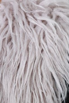 Nothing says chic quite the Mink Pink Endless Shaggy Grey Faux Fur Vest atop your favorite dress or top! Soft and shaggy faux fur vest with an open front design. Victorian Gothic, Gothic Lolita, Faux Fur Vests, Fur Jackets, Gothic Girls, Punk Girls, Steampunk Fashion, Gothic Fashion, Raver Girl