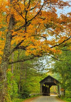 ***Pine River Bridge (Vermont) [photographer unknown]