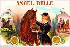Angel-Belle-Horse-Equestrian-Vintage-Cigar-Tobacco-Box-Crate-Inner-Label-Print