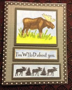 """Moose greeting card. """"I'm wild about you"""" . North woods rubber stamps."""