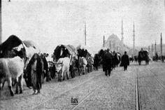Balkan Savaşı sonrası Göçmenler. milyonlarca Türk savaştan ne kurtarabilmişlerse bir at arabası ile İstanbul'a ve buradan da Anadolu'ya göçmüşlerdir. İstanbul'a gelenler Suhulet Araba vapuruna binebilmek için günlerce Ankara Caddesinde beklemişlerdir. 2. Balkan Savaşında kaybedilen toprakların az bir kısmı ve Edirne geri alınmıştır.
