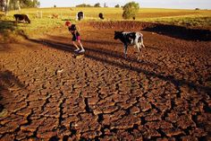 "Amid Epic Drought, South America's Largest City Is Running Out Of Water -- ""A January study in the peer-reviewed journal Nature by drought researcher Aiguo Dai shows that across the world from 1923 to 2010, there has been a global trend of increased dryness, which is directly linked to climate change."""