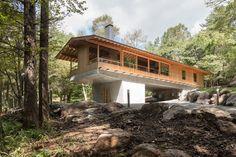 toshihito yokouchi elevates timber dwelling above the japanese woodland