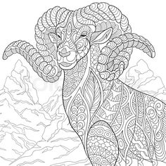 Ram Goat Coloring Page Adult Book By ColoringPageExpress