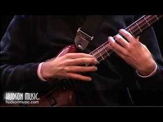 Michael Manring: Bass Solo