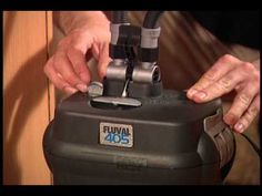 """This video shows how to clean a Fluval 304 or 305 model filter. Music is """"Nothing Broken"""" by Kevin Mcleod. Used with permission under Creative Commons. Aquarium Supplies, Fish Tanks, Aquariums, Filter, Youtube, Creative, Music, Model, Fun"""