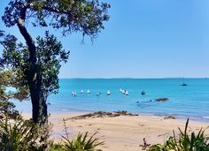 This is Auckland's Hauraki Gulf where the main Cup races will be held. America's Cup, Visit New Zealand, Warm Hug, Any Images, Auckland, Maine, Beach, Water, Outdoor