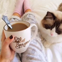 hello gorgeous mug {photo by cmcoving} I want this! in love love love with this!