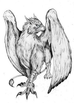 gryphon tattoo - Google Search
