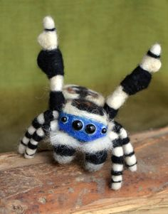Needle felted peacock spider - Maratus personatus by LaTaseELaFa on Etsy www. Cool Insects, Bugs And Insects, Spider Species, Cool Bugs, Itsy Bitsy Spider, Jumping Spider, A Bug's Life, Animal Tattoos, Needle Felting